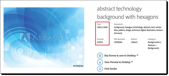 adobe stock 4